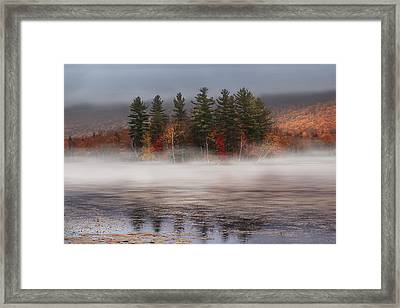 Lefferts Pond Framed Print by Magda  Bognar