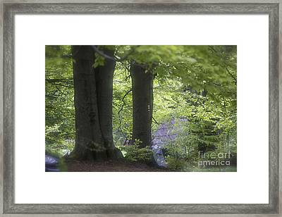 Lemkovyna - Galicia - The Northern Sides Of The Carpathian Mountains In Poland. Framed Print by  Andrzej Goszcz
