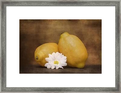 Lemon Fresh Still Life Framed Print by Tom Mc Nemar