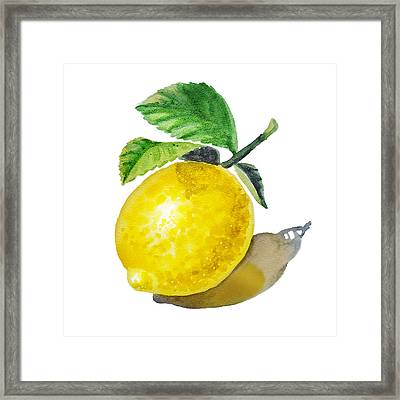 Lemon Framed Print by Irina Sztukowski
