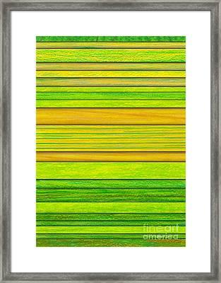 Lemon Limeade Framed Print by David K Small