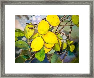 Lemons Framed Print by Debi Starr