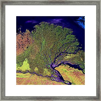 Lena Delta Framed Print by USGS Landsat