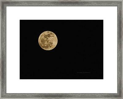 Lenten Moon Framed Print by Cricket Hackmann