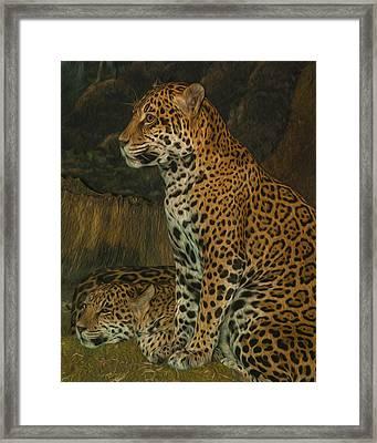Leo And Friend Framed Print by Jack Zulli