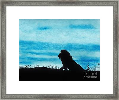 Leo At Sunset Framed Print by D Hackett
