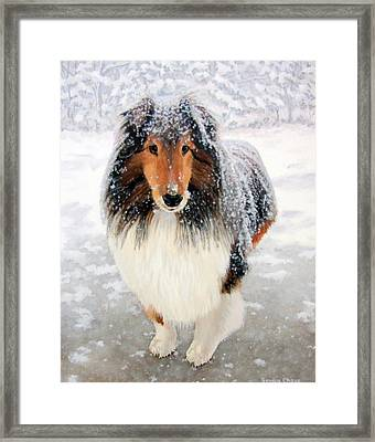 Leo In The Snow Framed Print by Sandra Chase
