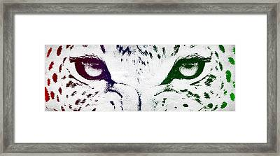 Leopard Eyes Framed Print by Aged Pixel