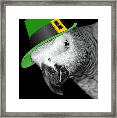 Leprechaun Parrot Framed Print by Mim White