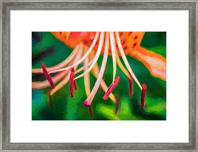 Let It All Hang Out - Paint Framed Print by Steve Harrington