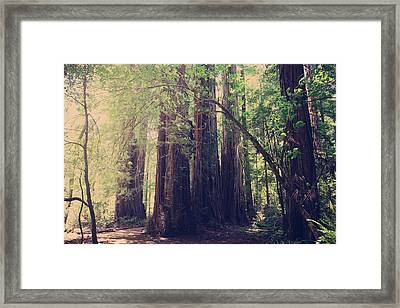 Let Me Be The One Framed Print by Laurie Search