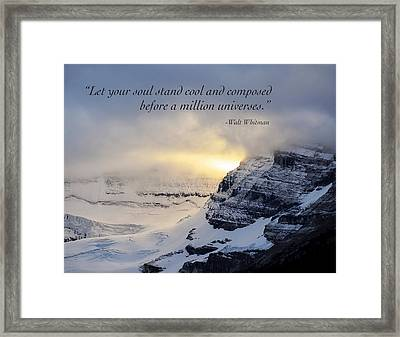 Let Your Soul Stand Cool Framed Print by Mary Lee Dereske