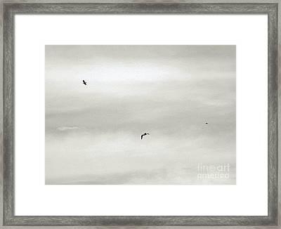 Let Your Spirit Soar Framed Print by Robyn King