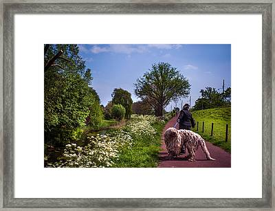 Lets Go Home Framed Print by Jenny Rainbow