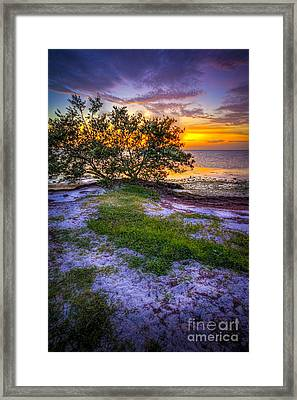Let's Keep Looking Framed Print by Marvin Spates