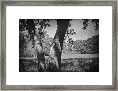 Let's Lay Here Forever Framed Print by Laurie Search