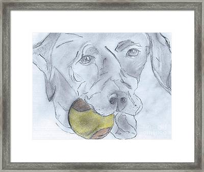 Let's Play Ball Framed Print by Elizabeth Briggs