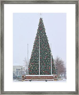 Levis Commons Christmas Tree Framed Print by Jack Schultz