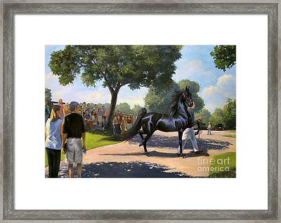 Lexington Stallion Tour Framed Print by Jeanne Newton Schoborg