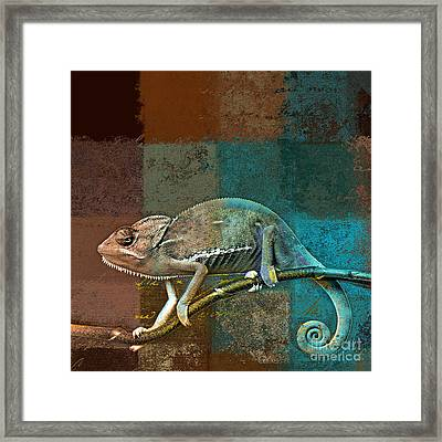 Lezardin - J131131149v5bcr Framed Print by Variance Collections