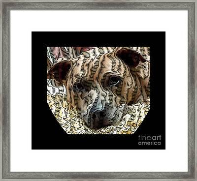 Li Ti Dog Framed Print by Renee Trenholm