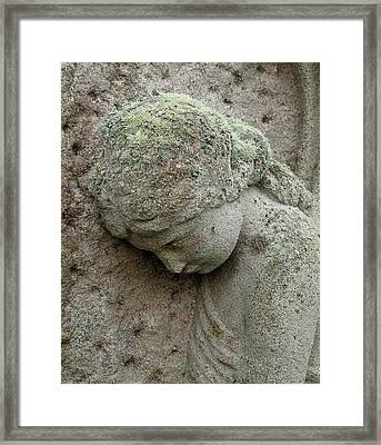 Lichen Growing On Gravestone Framed Print by Cordelia Molloy