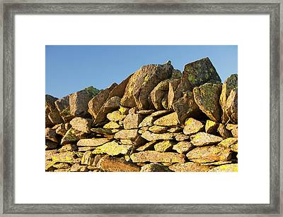 Lichen On A Dry Stone Wall Framed Print by Ashley Cooper