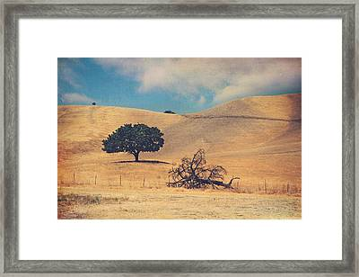 Life And Death Framed Print by Laurie Search
