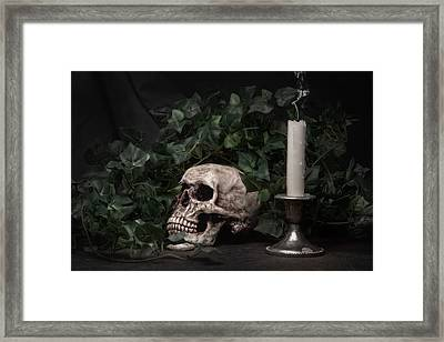 Life And Death Framed Print by Tom Mc Nemar