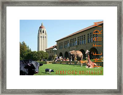 Life Down On The Farm Stanford University California With Text Dsc685 Framed Print by Wingsdomain Art and Photography