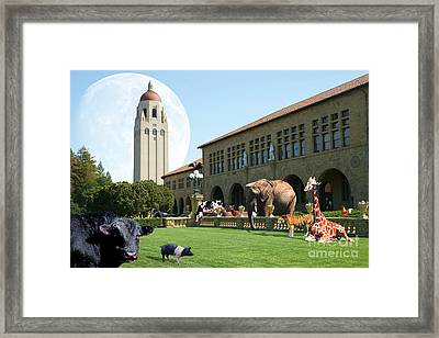 Life Down On The Farm Under The Moon Stanford University California Dsc685 Framed Print by Wingsdomain Art and Photography