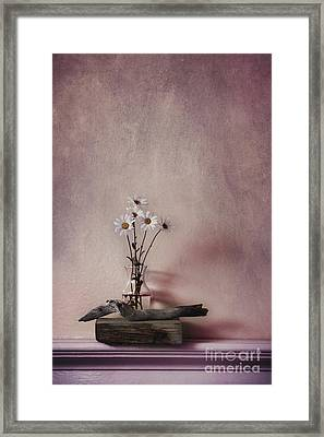 Life Gives You Daisies Framed Print by Priska Wettstein