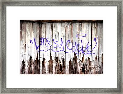 Life Is A Cycle Framed Print by Amanda Barcon
