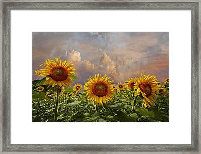 Life Is Good Framed Print by Debra and Dave Vanderlaan