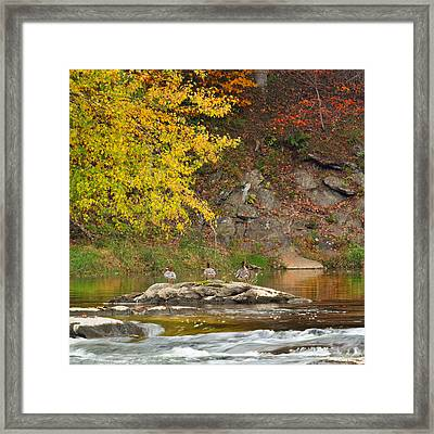 Life On The River Square Framed Print by Bill Wakeley