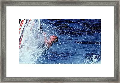 Lift Off Framed Print by  Waite