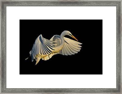 Lift Framed Print by Stuart Harrison