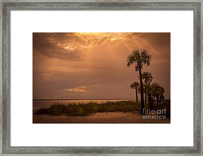 Light From Above Framed Print by Marvin Spates
