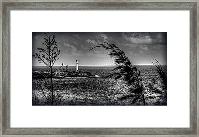 Light House 2 Framed Print by Craig Incardone