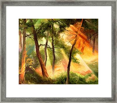 Light In The Forest Framed Print by Mikhail Savchenko