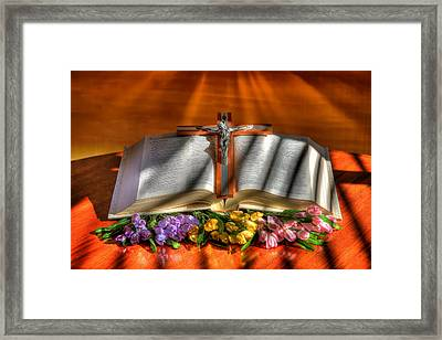 Light Of The World Framed Print by Donna Kennedy
