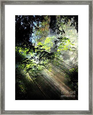 Light Rays Framed Print by Shasta Eone