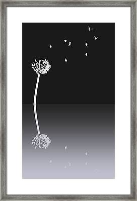 Light Speed Framed Print by Steven Milner