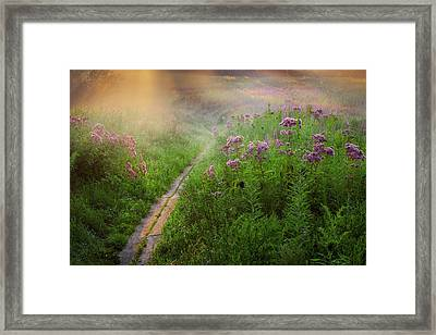 Lighted Path Framed Print by Bill  Wakeley