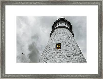 Lighthouse Framed Print by Diane Diederich