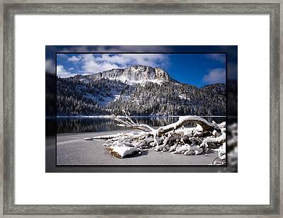 Lightly Powdered 2 Framed Print by Chris Brannen