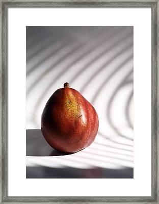 Lightly Salted  Framed Print by Tom Druin