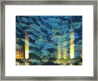 Lights Beneath The Water Framed Print by Marcia Lee Jones