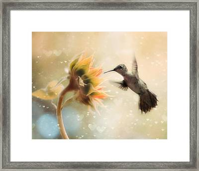 Like A Moth To A Flame Framed Print by Amy Tyler