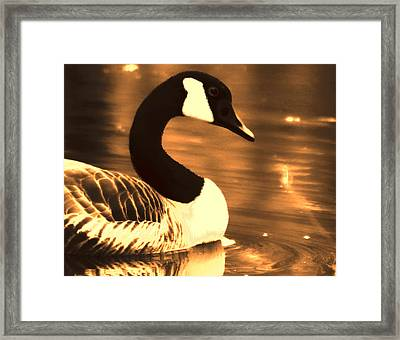 Lila Goose The Pond Queen Sepia Framed Print by Lesa Fine